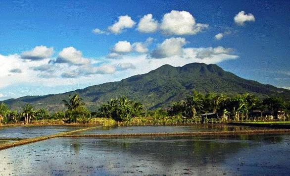 the legend of maria makiling full story