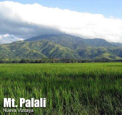 Mt. Palali
