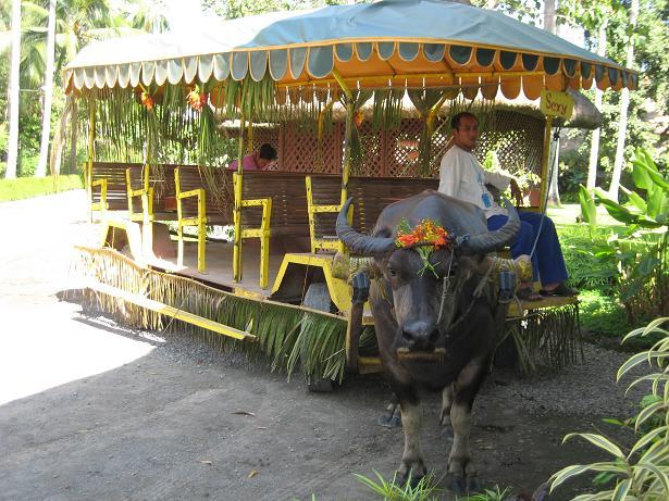 villaescudero