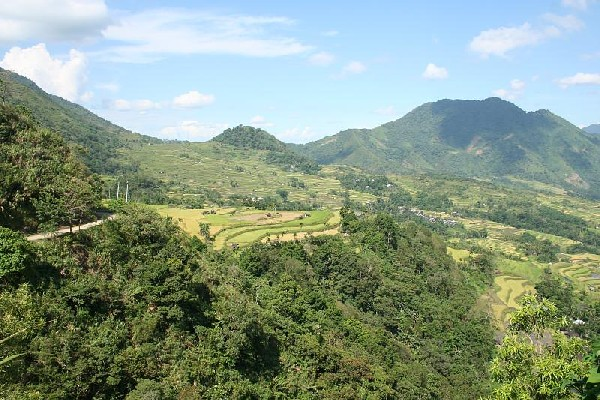 Natonin Rice Terraces