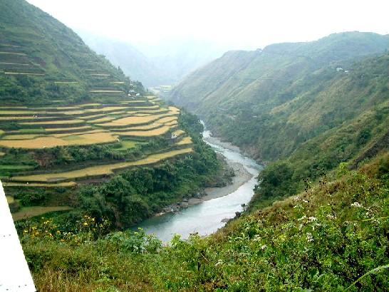 Tinglayan Rice Terraces