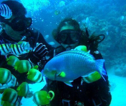 Scuba Diving Batangas