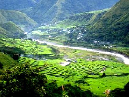 Benguet Naguey Rice Terraces