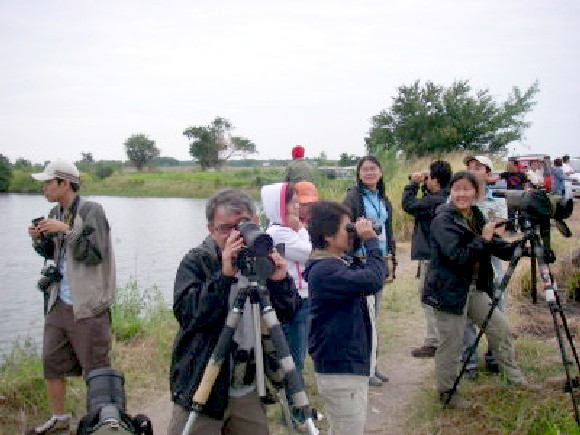 Bataan Birdwatching