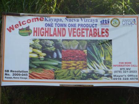 Nueva Vizcaya Kapaya Farm