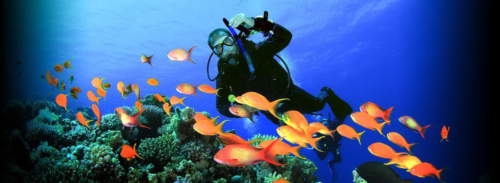 La Union Scuba Diving