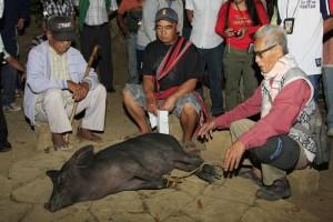 Ilocos Sur Begnas Festival7