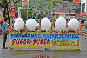 catanduanes-sugok-sugok-festival2